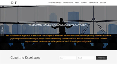 Professional Services Website